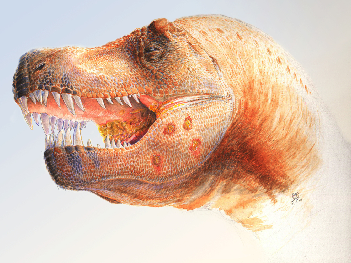 Trichomonas-like infection of T. rex