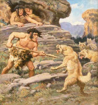 Figure 2: In this turn of the century painting by Charles R. Knight, the Neanderthal is shown attacking an animal at close range with a spear. This painting is actually relatively accurate, as it is believed that most Neanderthal groups hunted in this fashion. It was modern humans who took hunting a step further with distance weapons such as arrows and slings; another example of the cognitive difference between the two species.