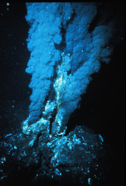 An Atlantic Hydrothermal Vent