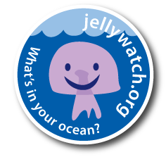 Jellywatch