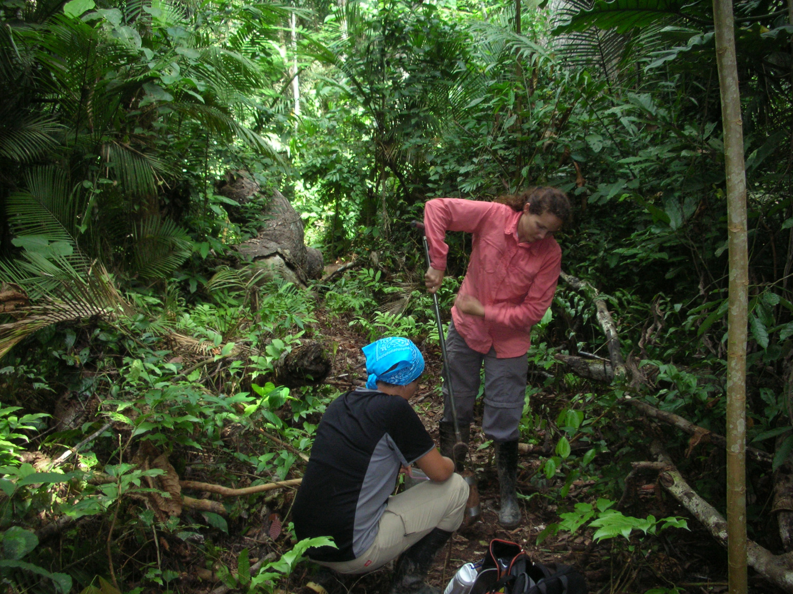 Crystal McMichael and Monica Zimmerman augur for soil cores in the Amazon.