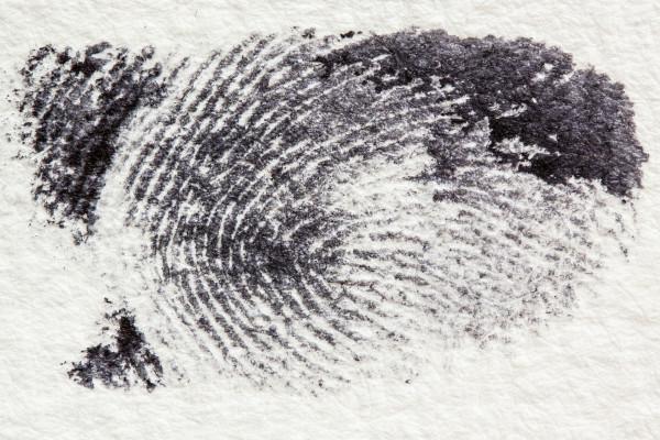 Human fingerprint