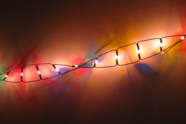Strand of DNA