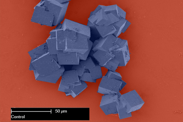 Metal-organic frameworks as seen under an electron microscope are made up of crystals that together shape multi-dimensional structures with vast surface areas. (Colour changed)