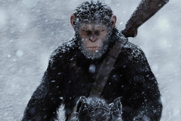 Image from War for the Planet of the Apes