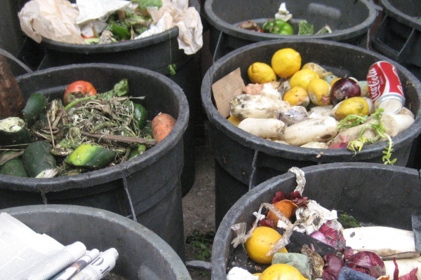 Bins filled with food