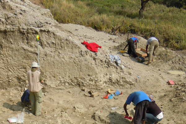 Palaeo-excavation site