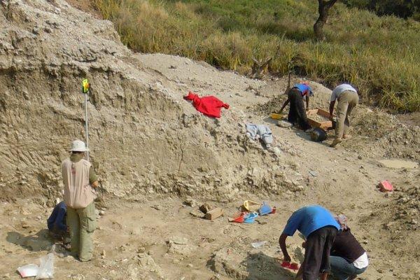 Palaeo-excavation site