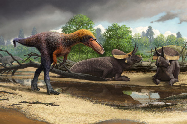 An artist's rendering of how Suskityrannus hazelae may have looked.
