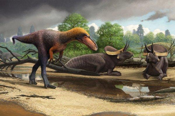 An artist's rendering of how Suskityrannus hazelae may have looked.