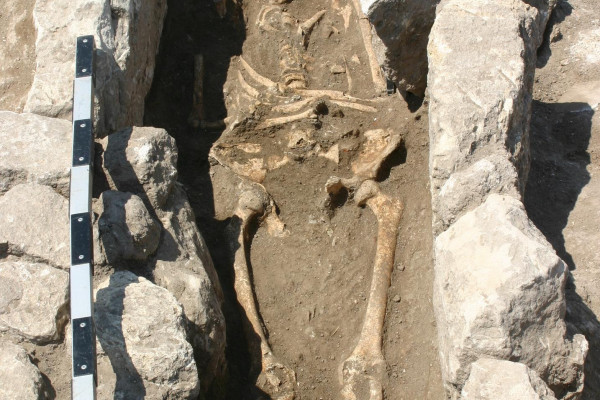 Skeleton with evidence of infection in pregnancy, from Troy.