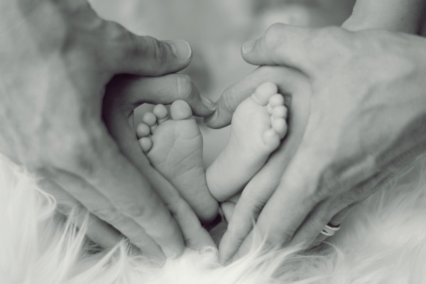 baby's feet, wrapped in parents' hands