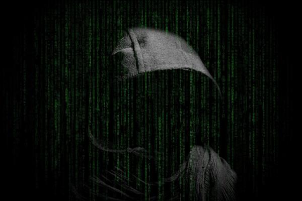 A cyber-criminal