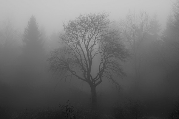 spooky environment