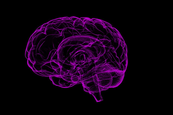 Purple Brain Drawing
