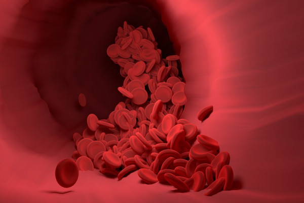 red blood cells cascading through a blood vessel