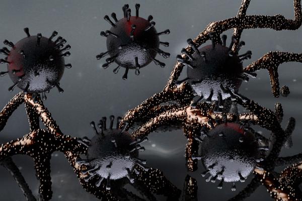 Black coronavirus particles and strings of RNA.