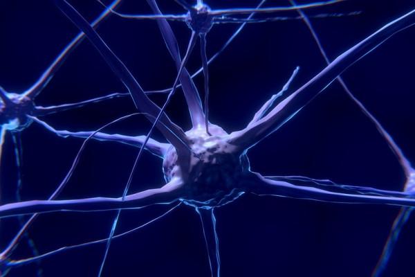 A CGI image of a neuron, coloured purple