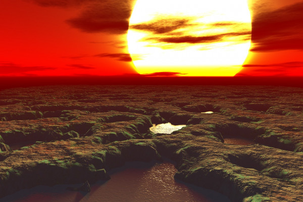 The sun setting over an alien-looking swampy landscape.