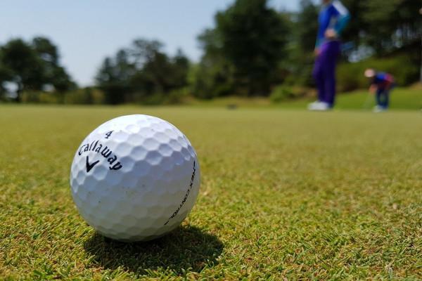 A golf ball on a green.