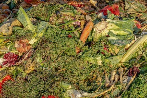 A compost heap.