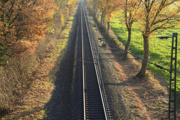 image of a train track with trees either side