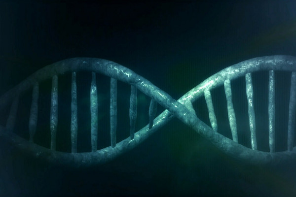 CGI images of DNA double helix