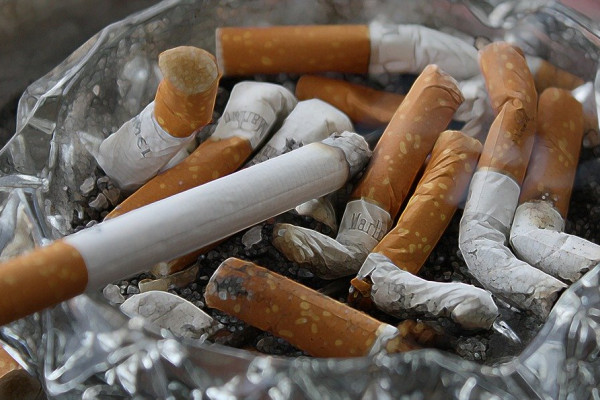 Cigarettes in an ashtray.