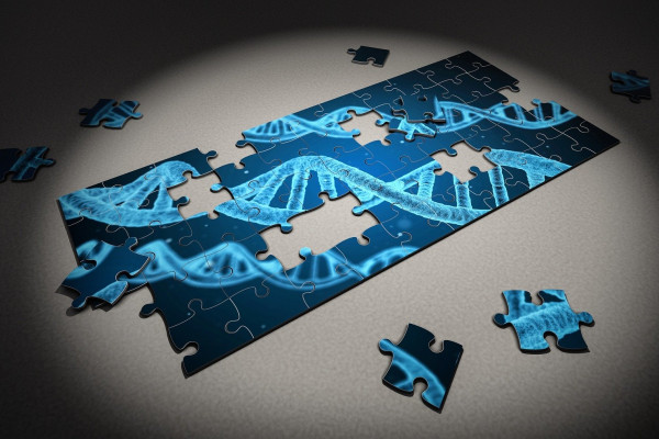 DNA Jigsaw Puzzle
