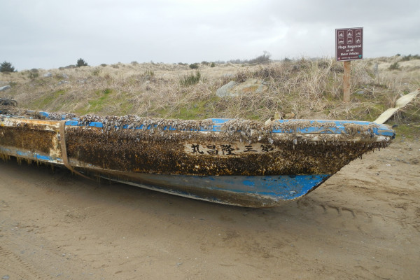 Japanese boat swamped by the 2011 tsunami washes up in America