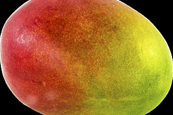 close up of a mango