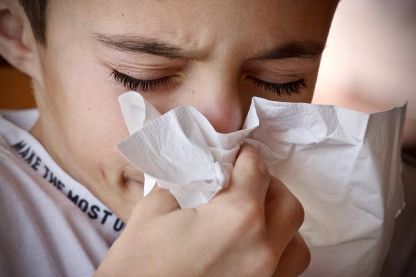 A child with a runny nose and sneezing into a handkerchief