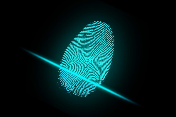 A blue fingerprint on a digital reader.