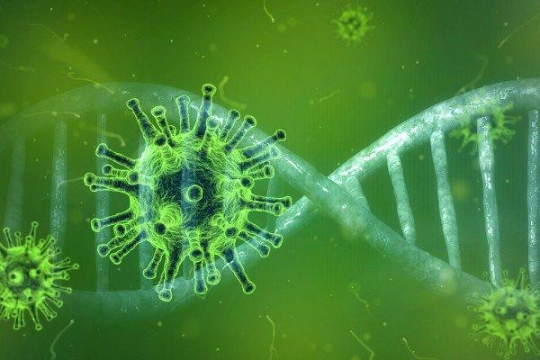 Green coronavirus particles around a strand of DNA.