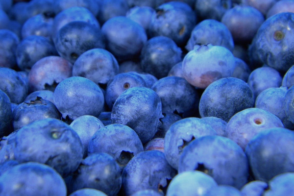 a photo of some blueberries