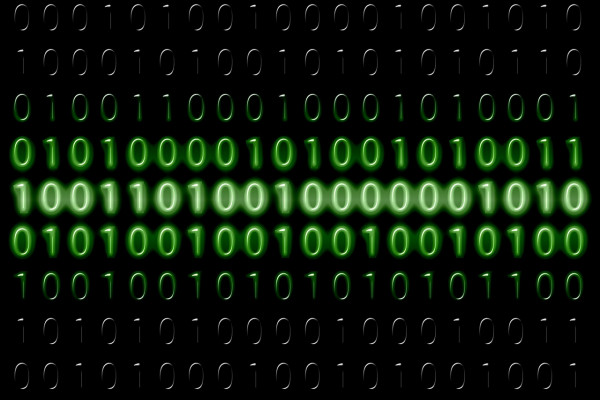 Binary digits on a green computer display.