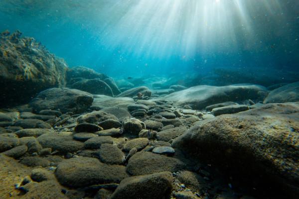 Light shines on sea floor