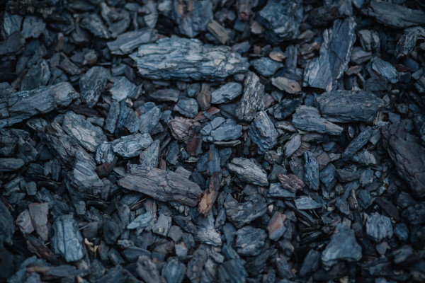 Pieces of coal