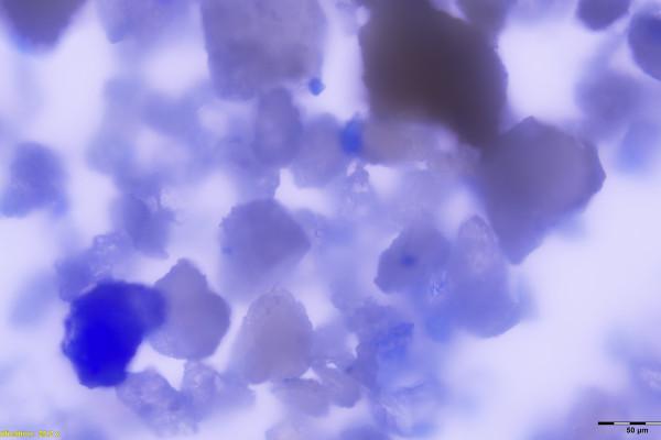 Teeth-Pigment