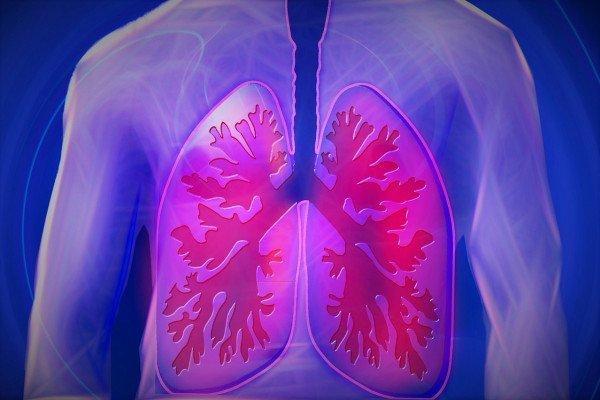 CGI Lungs