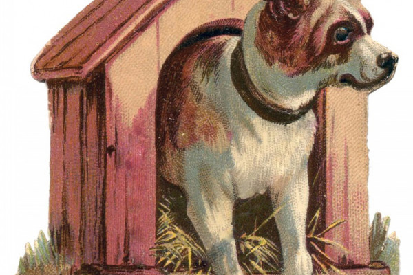 Vintage illustration of a dog coming out of a kennel