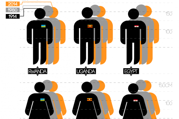 A large scale study reveals how human height has changed in the last 100 years.