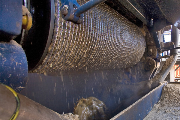 Once at the mill, cane stalks are crushed to extract sucrose, which is then refined to make table sugar, fuel ethanol or other products.