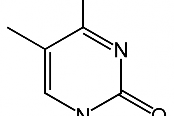 Methylcytosine