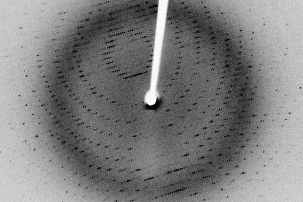 X-ray diffraction pattern of crystallized 3Clpro, a SARS protease. (2.1 Angstrom resolution).
