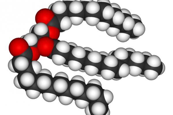 A triglyceride molecule