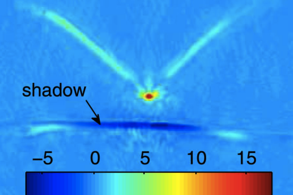 Some bats rely on the detection of acoustic shadows to locate their prey.