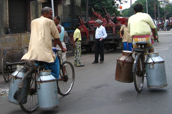 Milk churns being carried on bicycles, Kolkata, India.