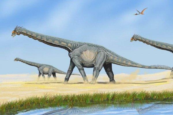The sauropod Alamosaurus