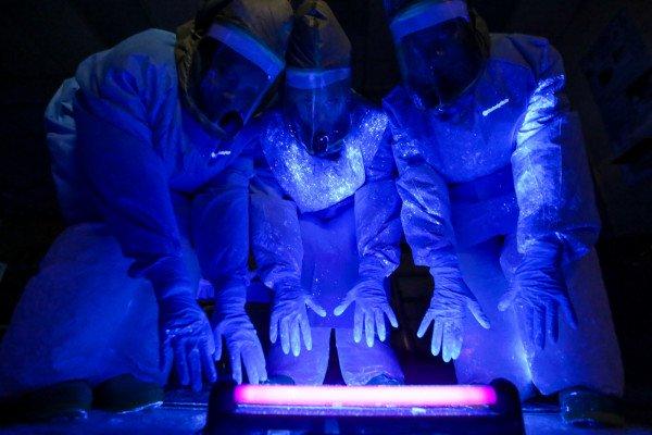 Ebola simulation